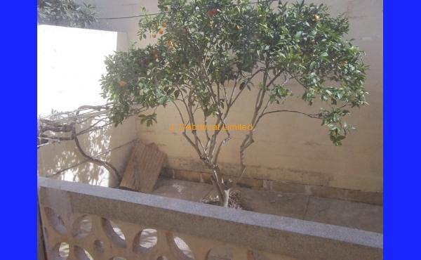 Nadur Terrace House For Long Let