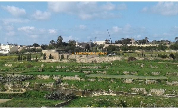 Gharb-Gozo-965-03